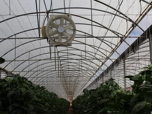 Sistemas de Ventilación Forzada (Extractores y Ventiladores)